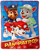 Amazon Price History for:PAW Patrol All Paws on Deck Micro Raschel Blanket