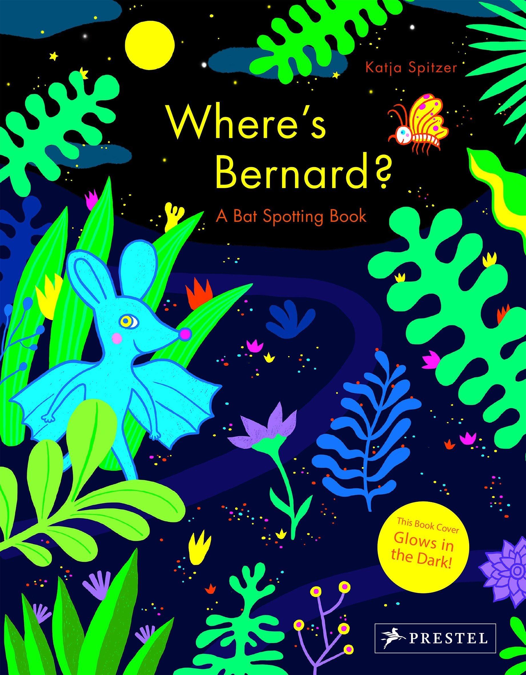 Where's Bernard?: A Bat Spotting Book ebook