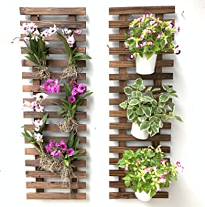 Wall Planter – 2 Pack Wooden Hanging Planters for Indoor Plants, Wall Mounted Plant Stand Ladder, Outdoor Vertical Garden Balcony, Unique Live Orchid Planter, Large Green Wall Decor Decorations
