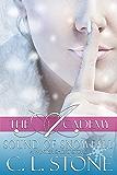Sound of Snowfall: A Ghost Bird Series Winter Short Story (The Academy Ghost Bird Series)