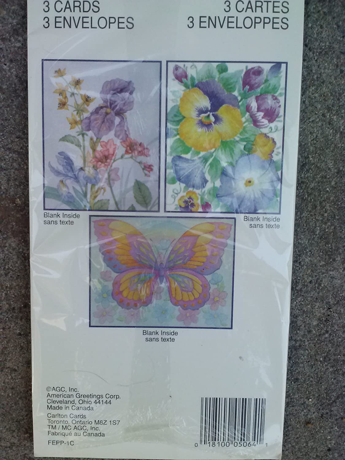 Amazon american greetings forget me not floral pansies amazon american greetings forget me not floral pansies butterfly blank note cards envelopes trio office products m4hsunfo