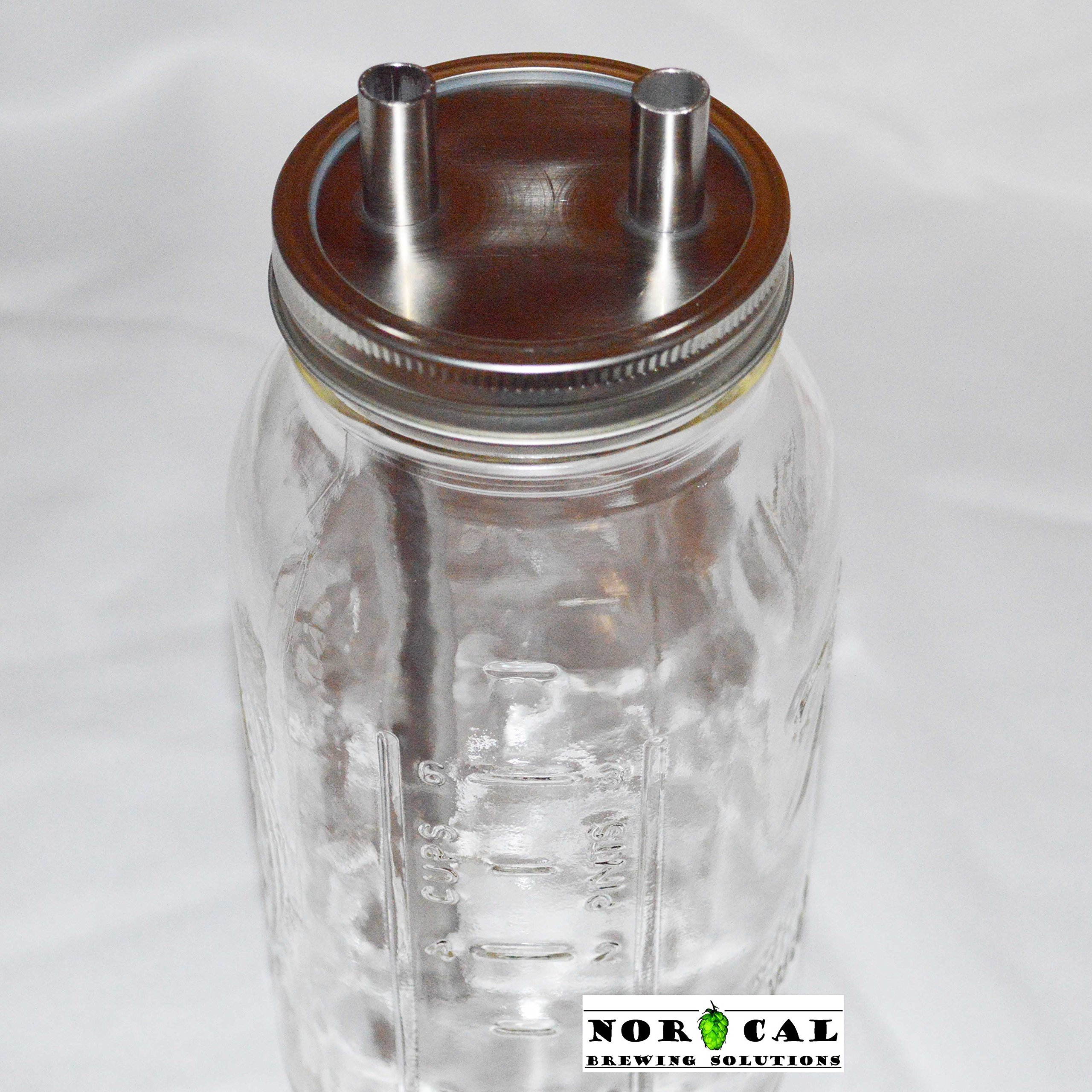Jaybird CANNING JAR HOP FILTER - Plain Tube Connections - Kit with Jar