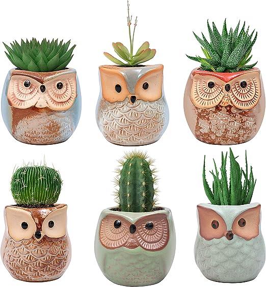 BELLE VOUS Mini Macetas Ceramica Diseño Búho (Pack de 6) - (6 x ...