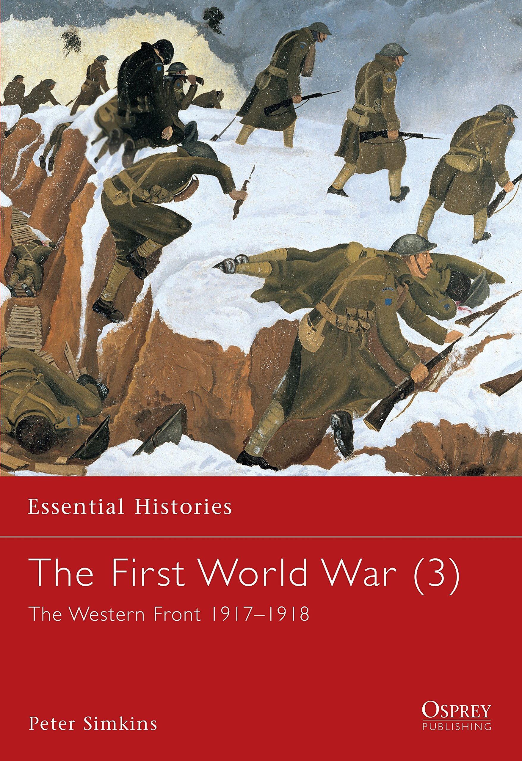 The First World War (3): The Western Front 1917–1918 (Essential Histories) ebook