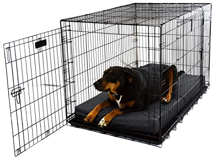 Amazoncom Big Dog Beds Crate Pad 6 Thick Memory Foam Bed Pet