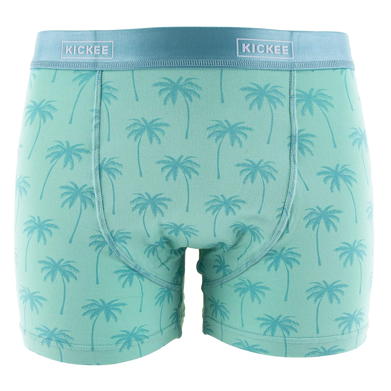Glass Palm Trees - XS KicKee Menswear Print Boxer Brief