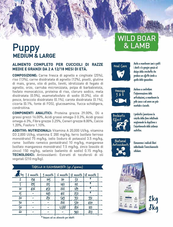 Evoque Puppy Medium & Large Jabalí Y Cordero 12kg: Amazon.es: Productos para mascotas
