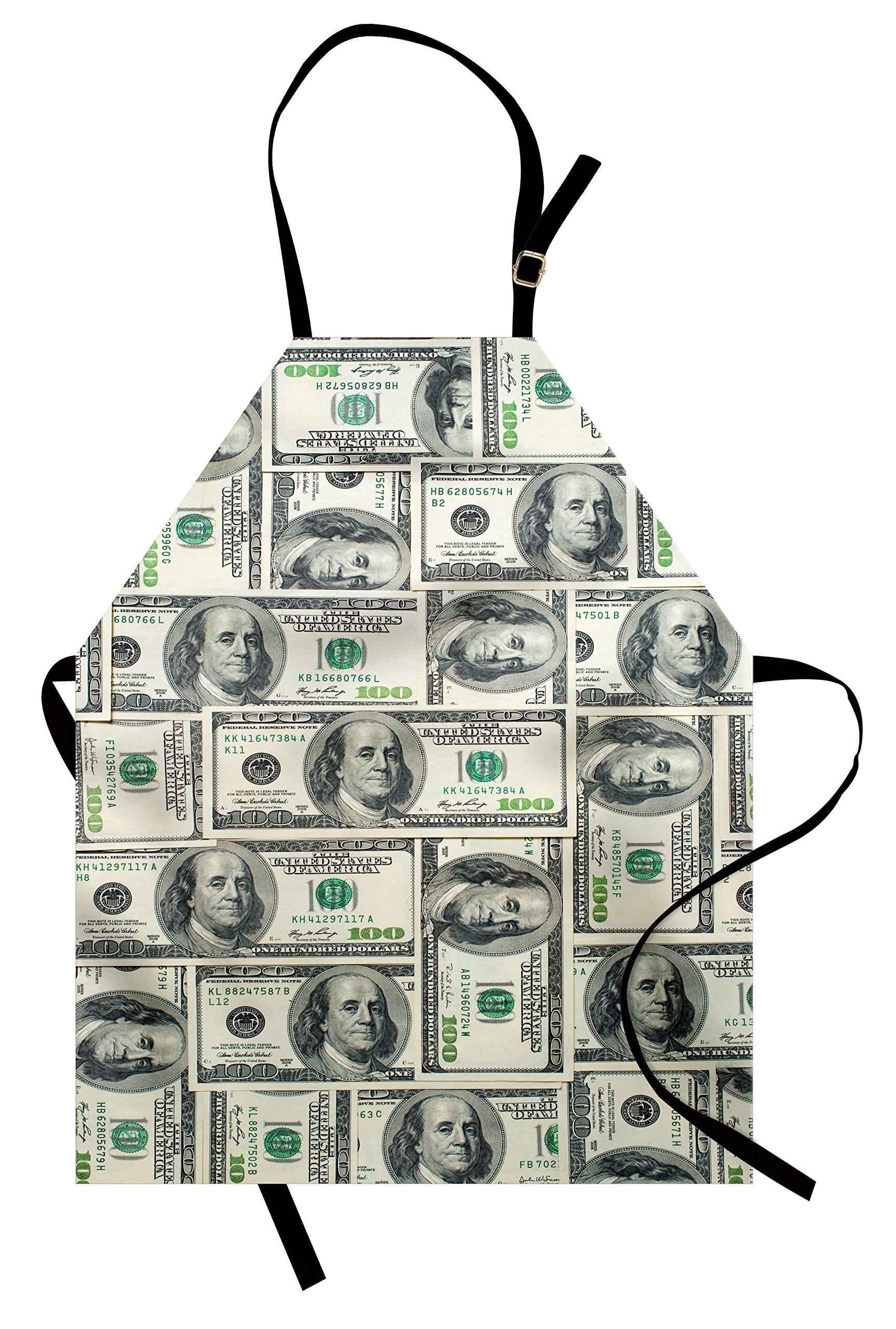 Ambesonne Money Apron, Dollar Bills of United States Federal Reserve with The Portrait of Ben Franklin, Unisex Kitchen Bib Apron with Adjustable Neck for Cooking Baking Gardening, Pale Green Grey