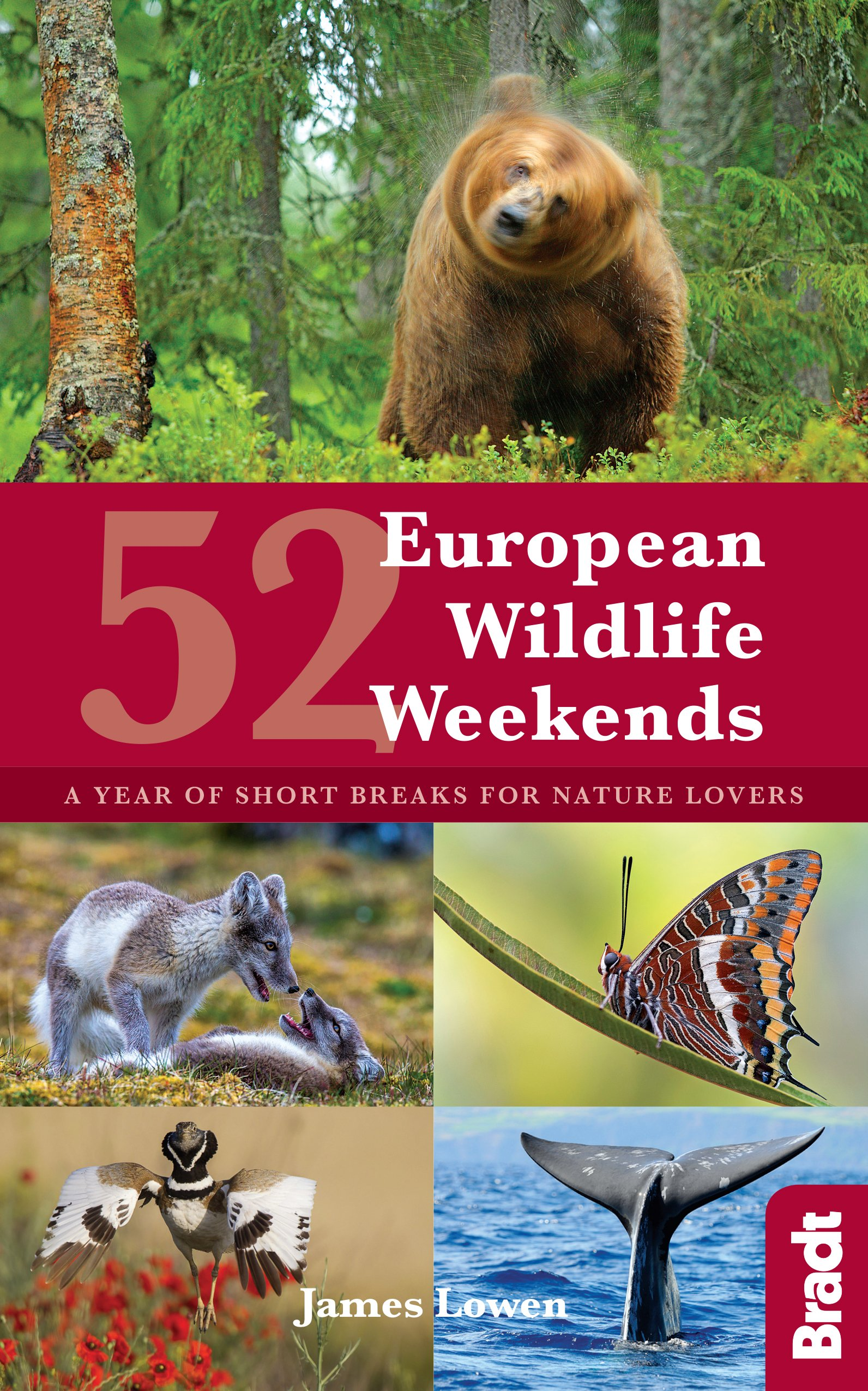 52 European Wildlife Weekends: A year of short breaks for nature lovers (Bradt Travel Guides (Regional Guides)) (English Edition)