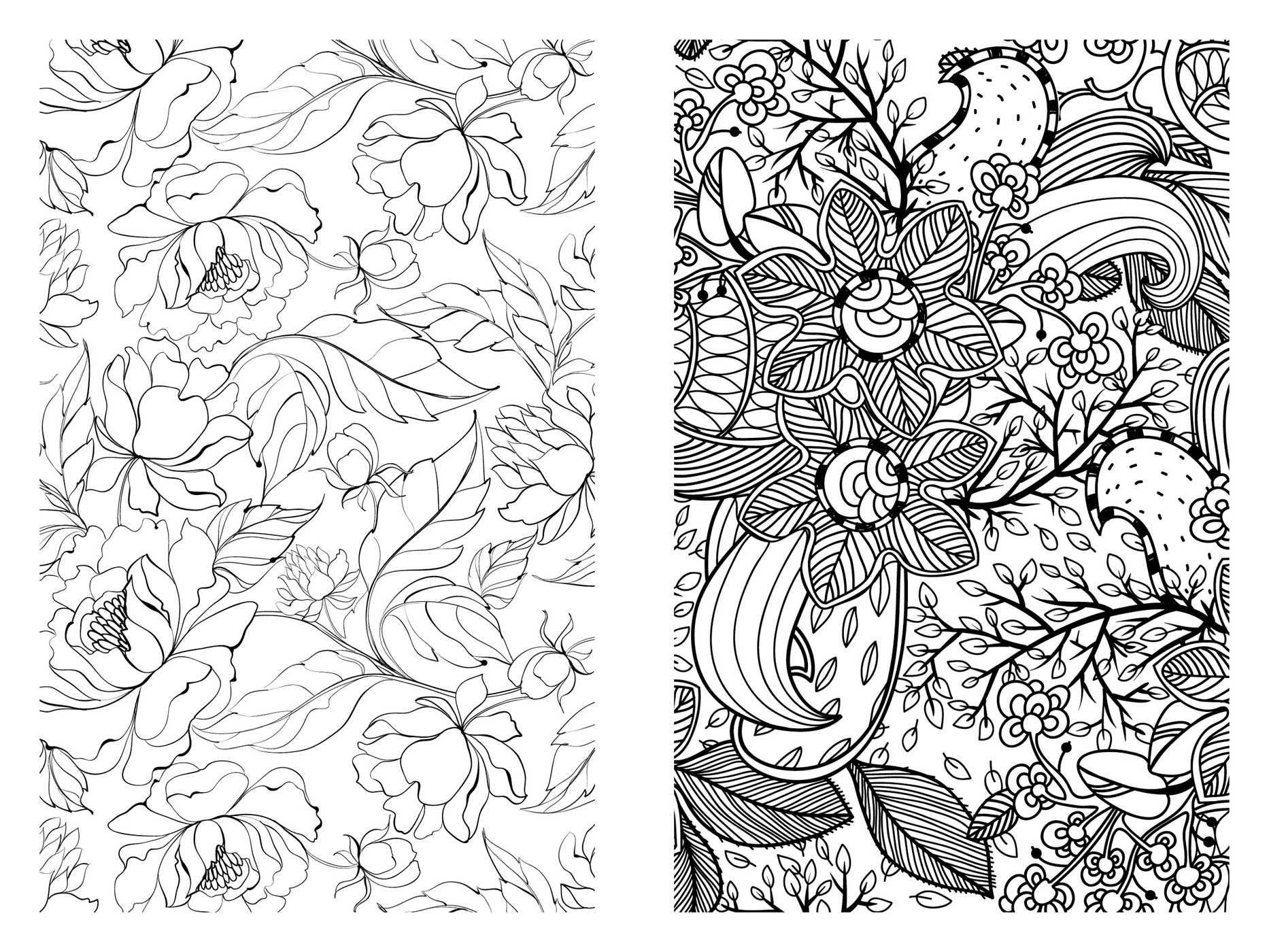 - Amazon.com: Pocket Posh Adult Coloring Book: Pretty Designs For