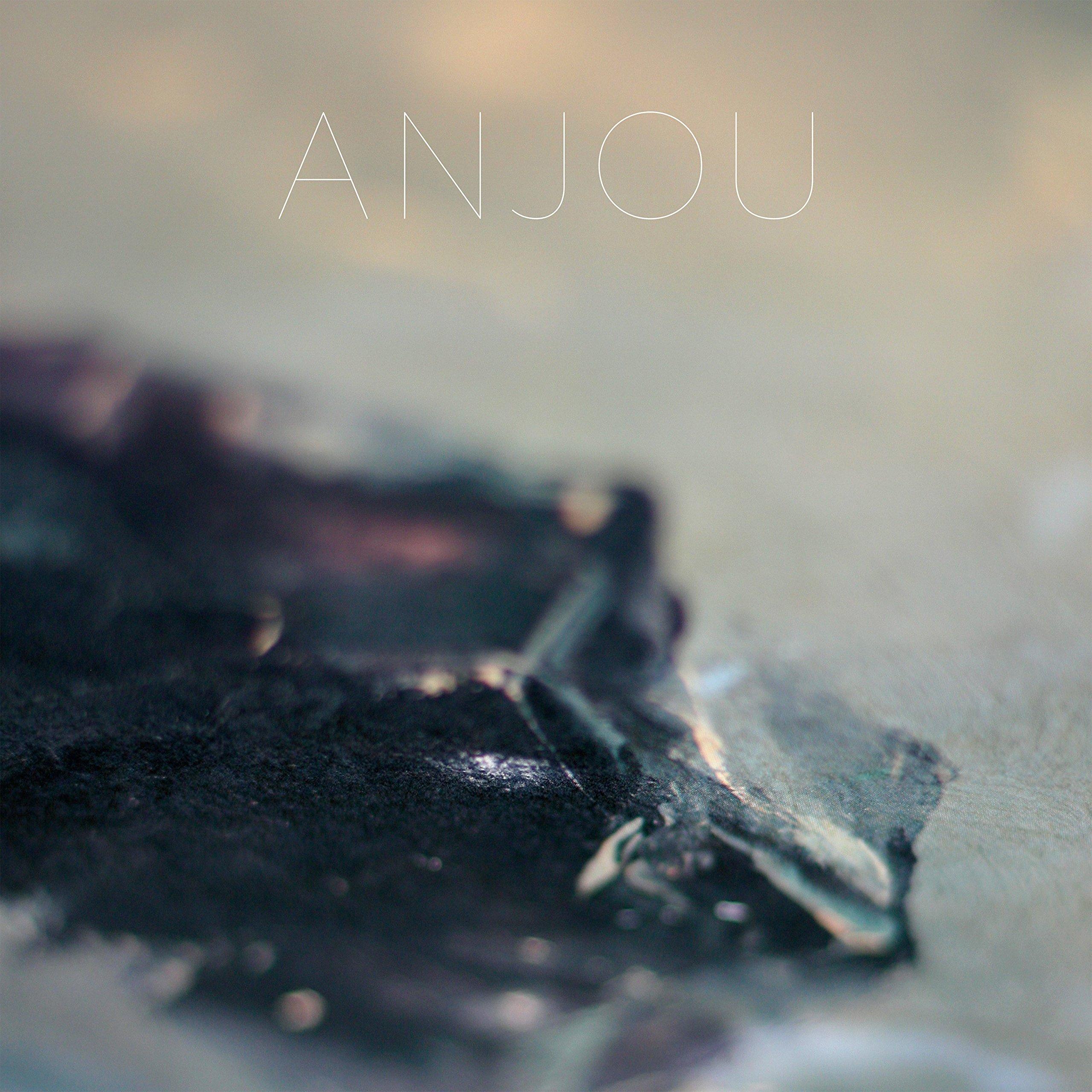 Vinilo : Anjou - Epithymia (LP Vinyl)