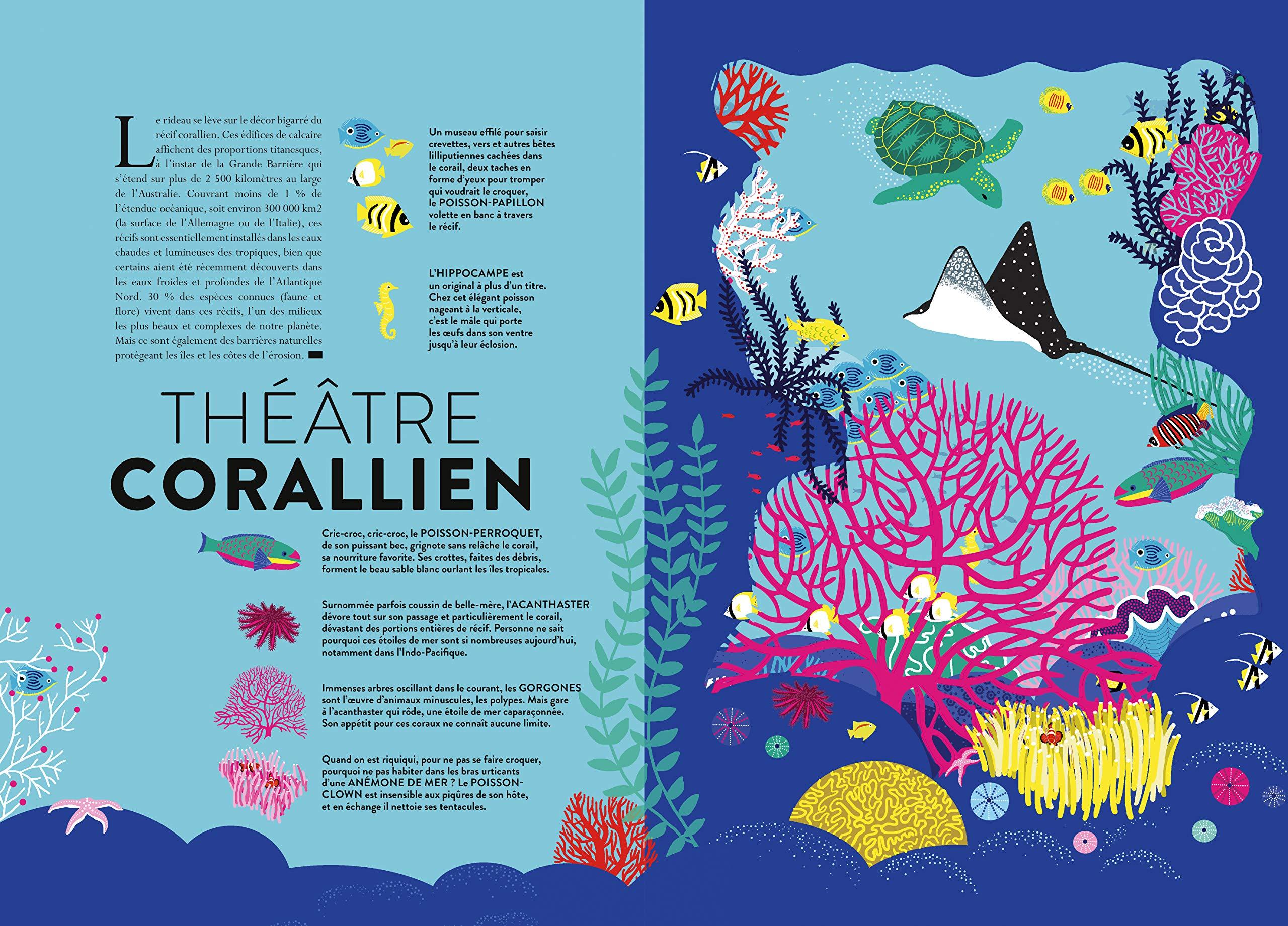 Océan Découpes Et Animations Pour Explorer Le Monde Marin