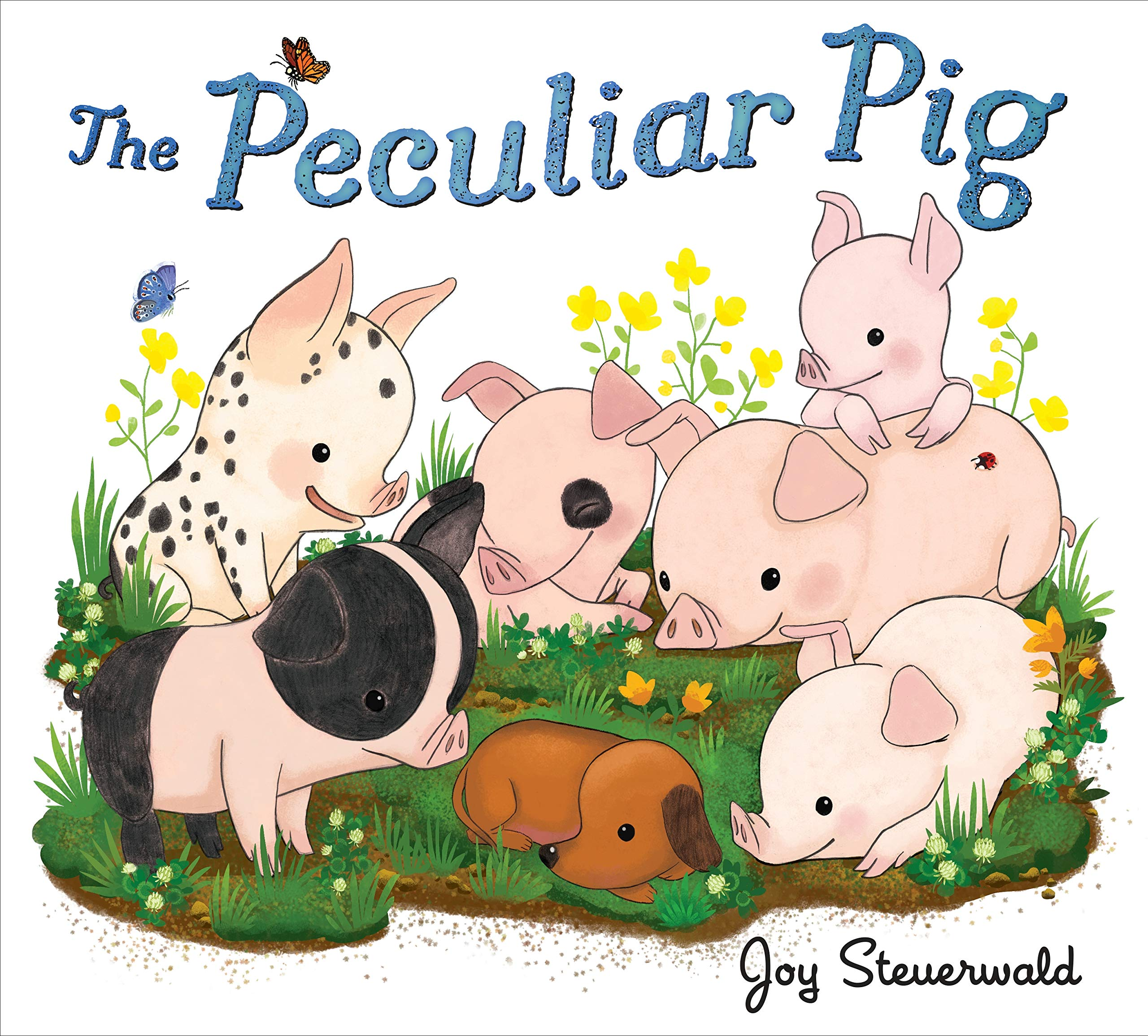 Meet Joy Steuerwald, Local Author & Illustrator