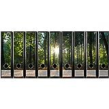 codiarts Set 9Pezzi Larghezza raccoglitori di Etichette autoadesive (raccoglitori di Sticker) Sole Raggi, Naturale, Sole nel Bosco, Tramonto su radura della Foresta