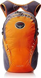 WOSHERD Daylite Backpack (Spring 2016 Model)
