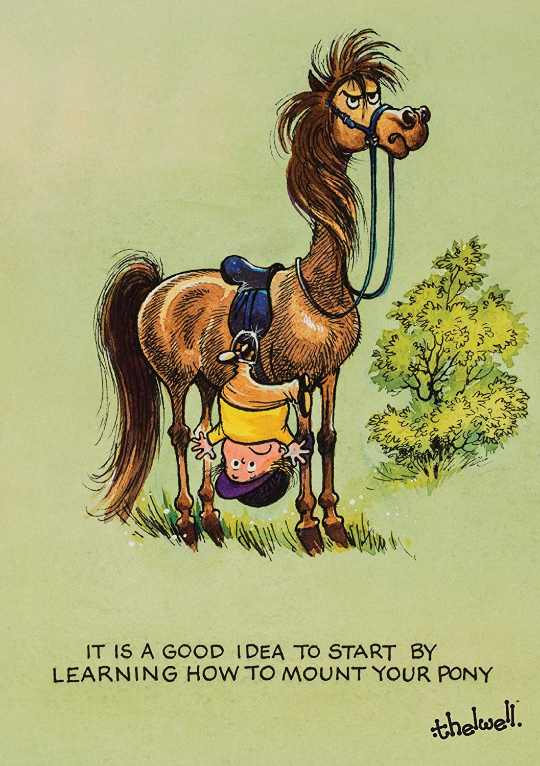 Thelwell Horse or Pony Greeting Card Learning to Ride Agripix Ltd