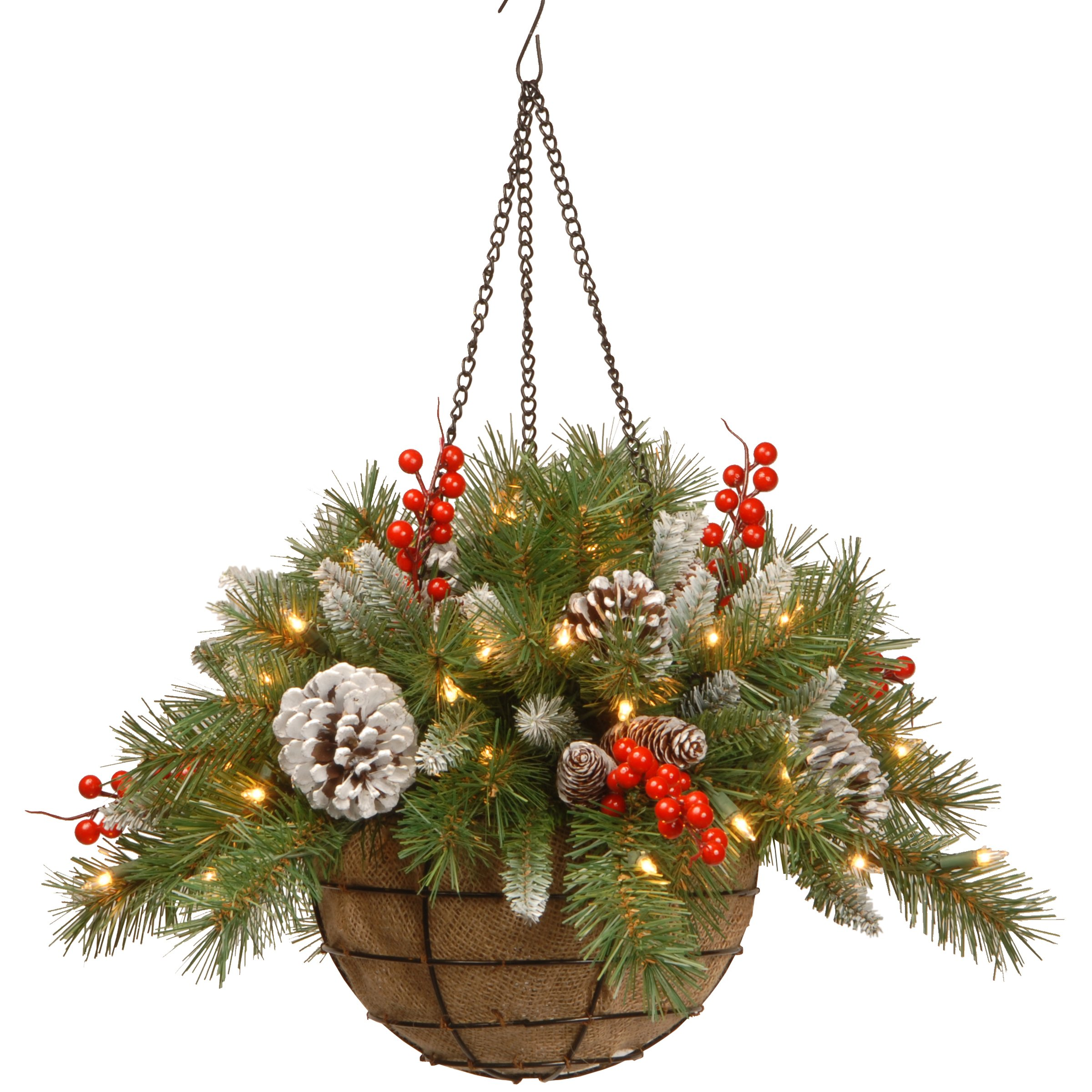 National Tree 20 Inch Frosted Berry Hanging Basket with Red Berries, Cones and 50 Battery Operated Warm White LED Lights (FRB-20HLW-B1)