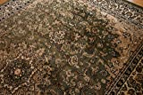 Feraghan/New City Traditional Area Rug, 13' x
