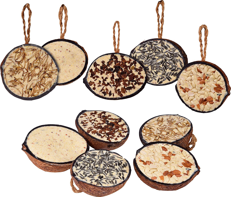dobar Dix Noix de Coco rempli de 5Types de graines pour Oiseaux à Suspendre, ganzjähriges Graisse de Nourriture pour Oiseaux Sauvages pour Oiseaux Sauvages, 1er Pack (1x 2kg) 24090e