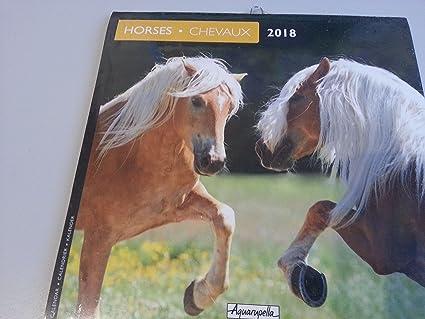 Calendario 2018 Dimensions 16 x 16 cm- chevaux- Horses una ...