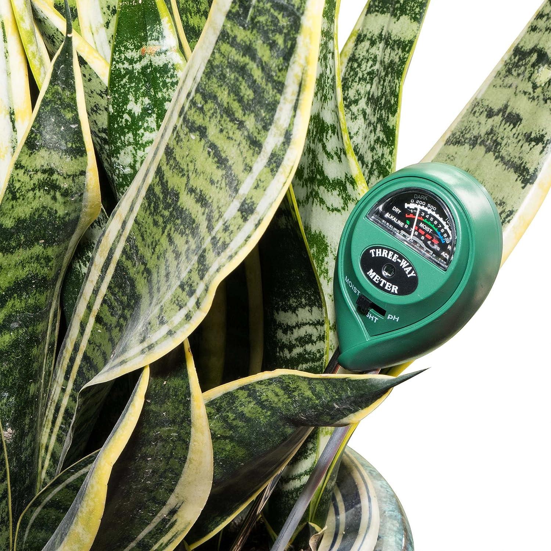 Amado Soil pH Meter Review