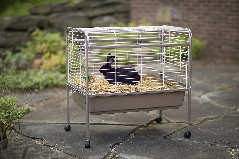 Amazon Com Prevue Hendryx 425 Pet Products Small Animal Cage