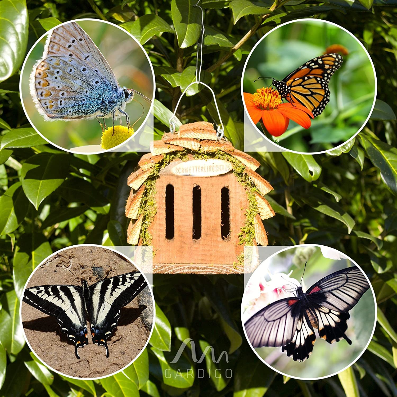 Luxus Amazon Gartendeko Design