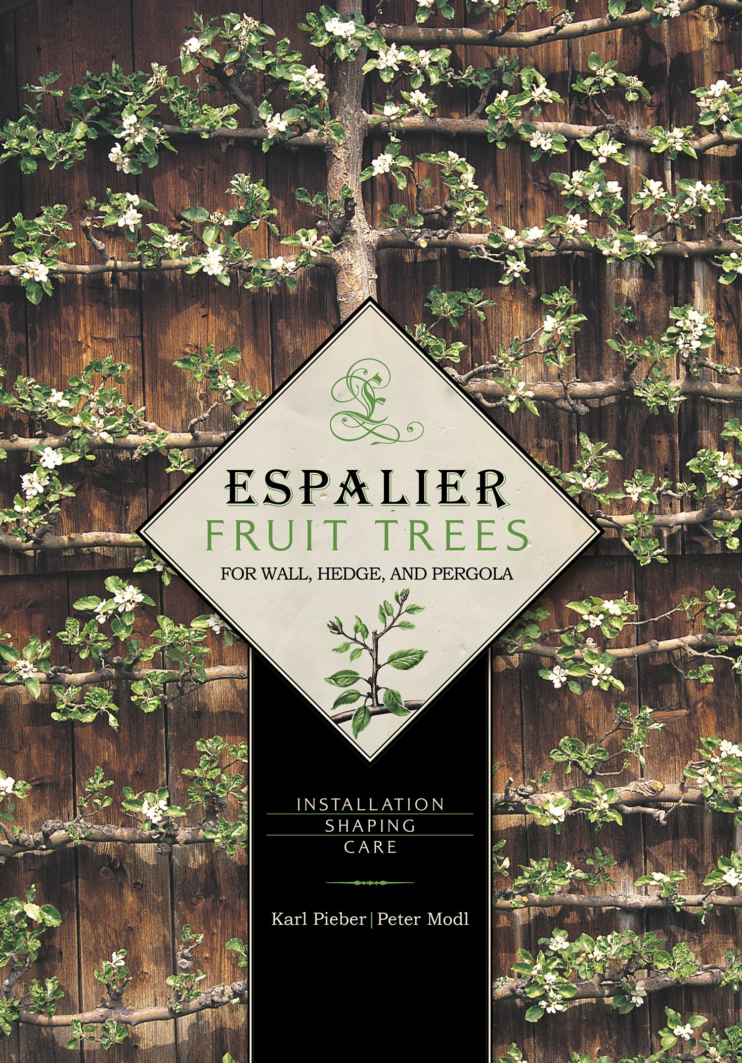 Espalier Fruit Trees For Wall Hedge And Pergola Installation
