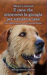 Larte di correre sotto la pioggia (Bestseller Vol. 224) (Italian Edition)