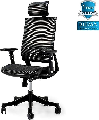 Ergonomic Chair Adjustable Office Chair Mesh Chair