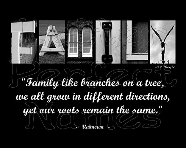 Amazon.com: 000 – Alphabet Photo   FAMILY (Tree)   Inspirational