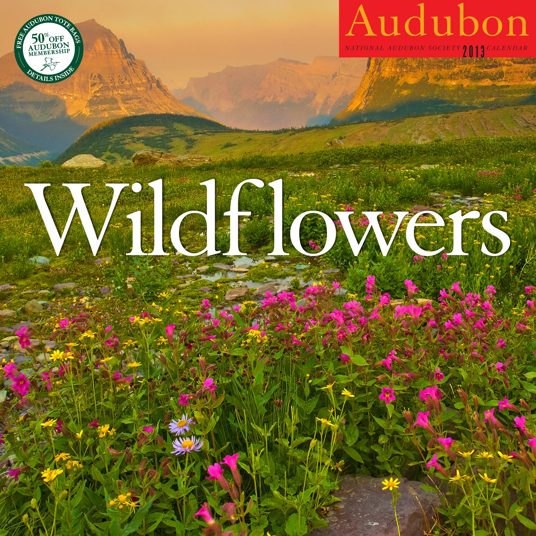 Amazon.com: AUDUBON WILDFLOWERS CALENDAR 2013 (9781579654863): National  Audubon Society: Books