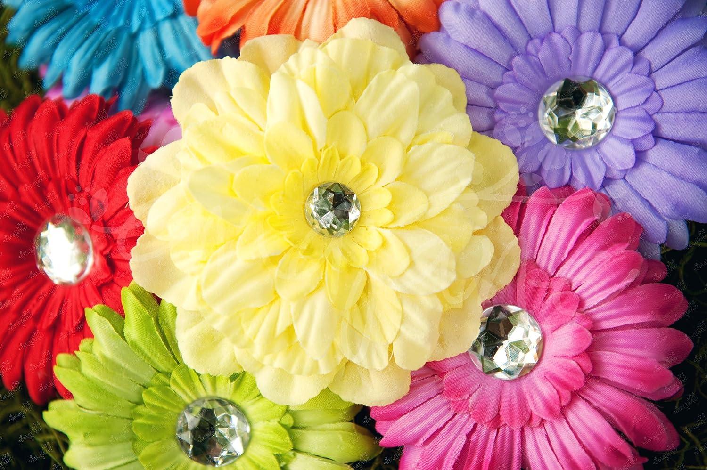 Amazon Ema Jane Spring Bling Gerber Daisy Flower Hair Clips