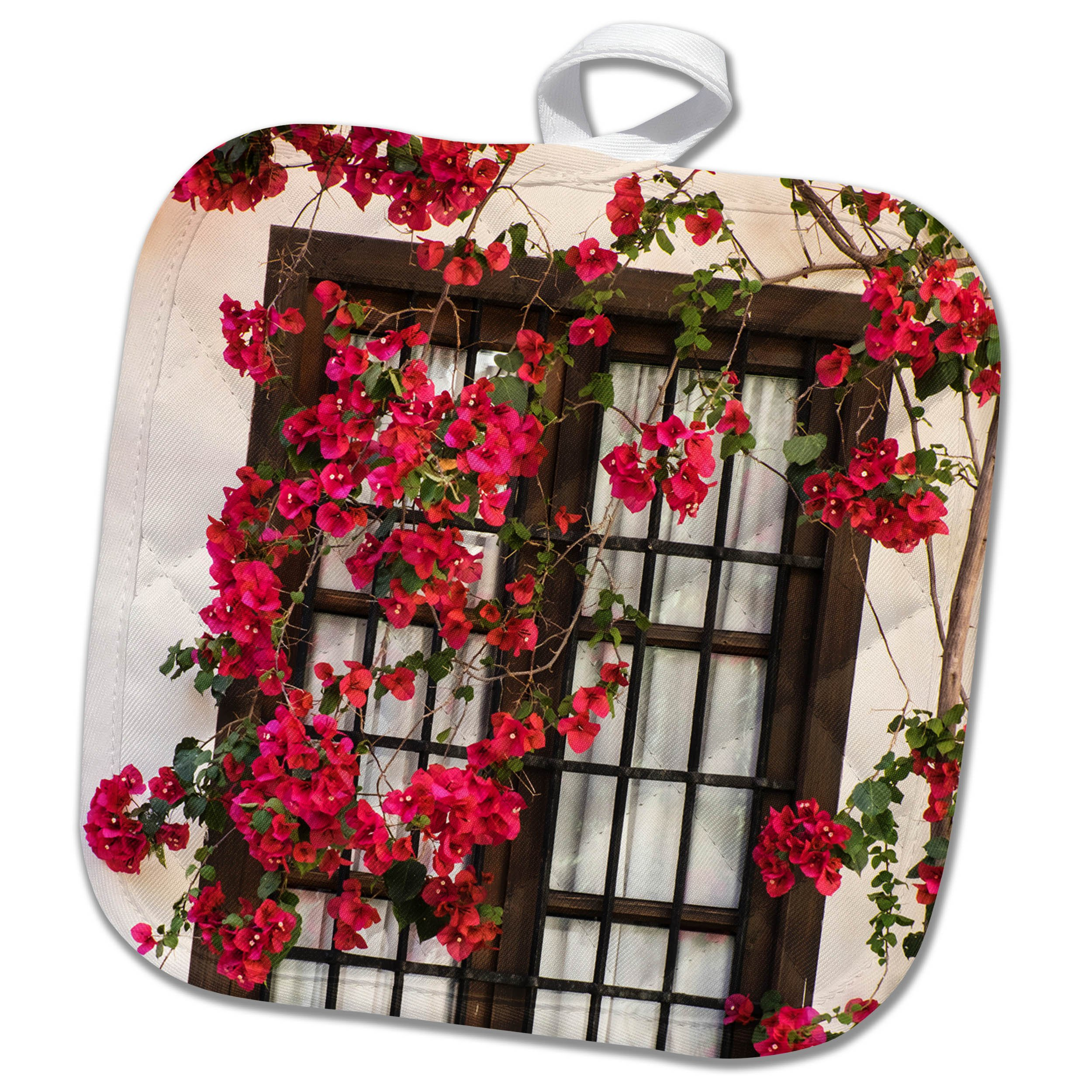 3dRose Danita Delimont - Flowers - Spain, Andalusia. Cordoba. Red bougainvillea and house window. - 8x8 Potholder (phl_277893_1)