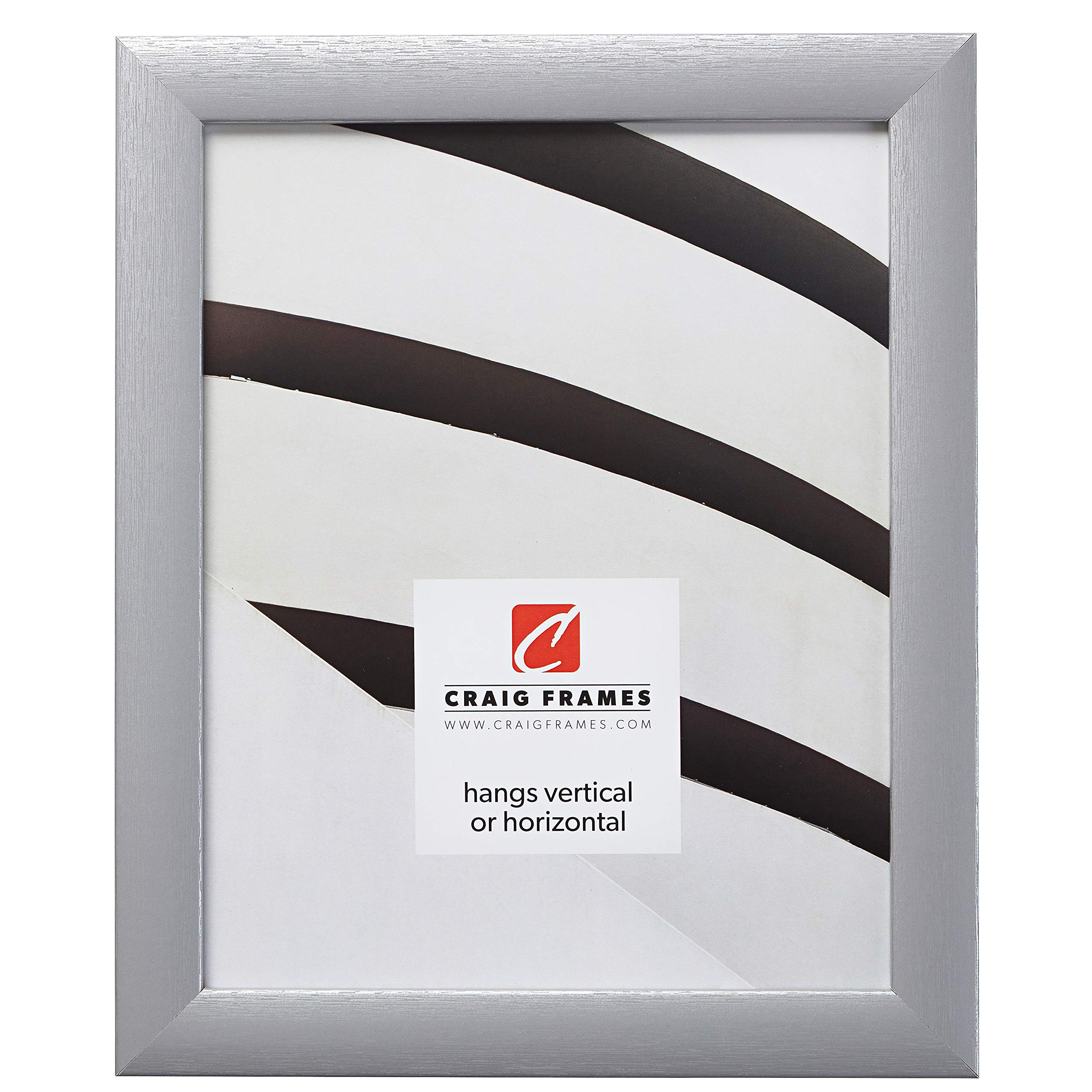Craig Frames 23247018 Picture Frame, 16 x 20 Inch, Brushed Silver by Craig Frames