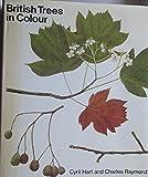 British Trees in Colour