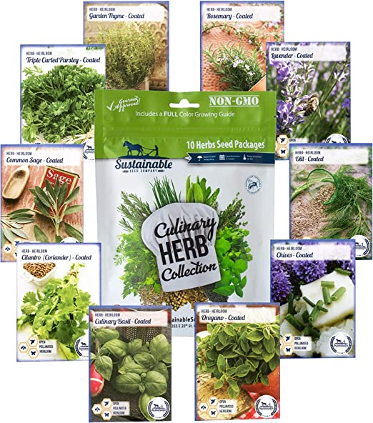 GROW YOUR OWN 700 x SEEDS HERBS,6 IN ONE MIXED VARIETY PACK KITCHEN BASIL NEW