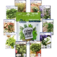 Sustainable Seed Culinary Herb Seeds Collection w/Growing Guide – 10 Non-GMO Heirloom Varieties: Basil, Thyme, Rosemary, Oregano, Parsley, Lavender, Sage, Cilantro, Chives, and Dill