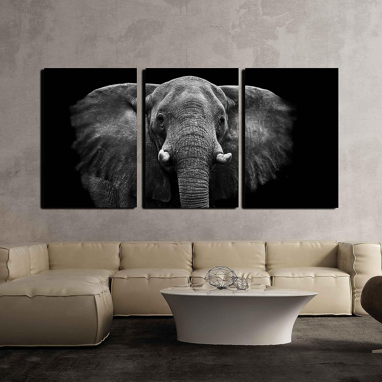 """wall26 - Elephant on Black Background - Canvas Art Wall Decor - 16""""x24""""x3 Panels"""