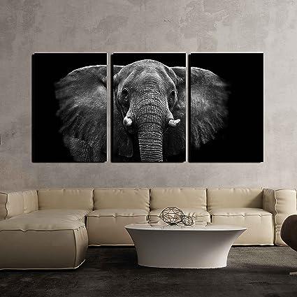 Amazoncom Wall26 Elephant On Black Background Canvas Art Wall