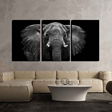 Amazon.Com: Wall26 - 3 Piece Canvas Wall Art - Elephant - Modern