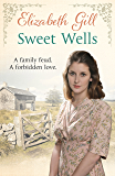 Sweet Wells: A Family Feud. A Forbidden Love (The Black Family Book 3)