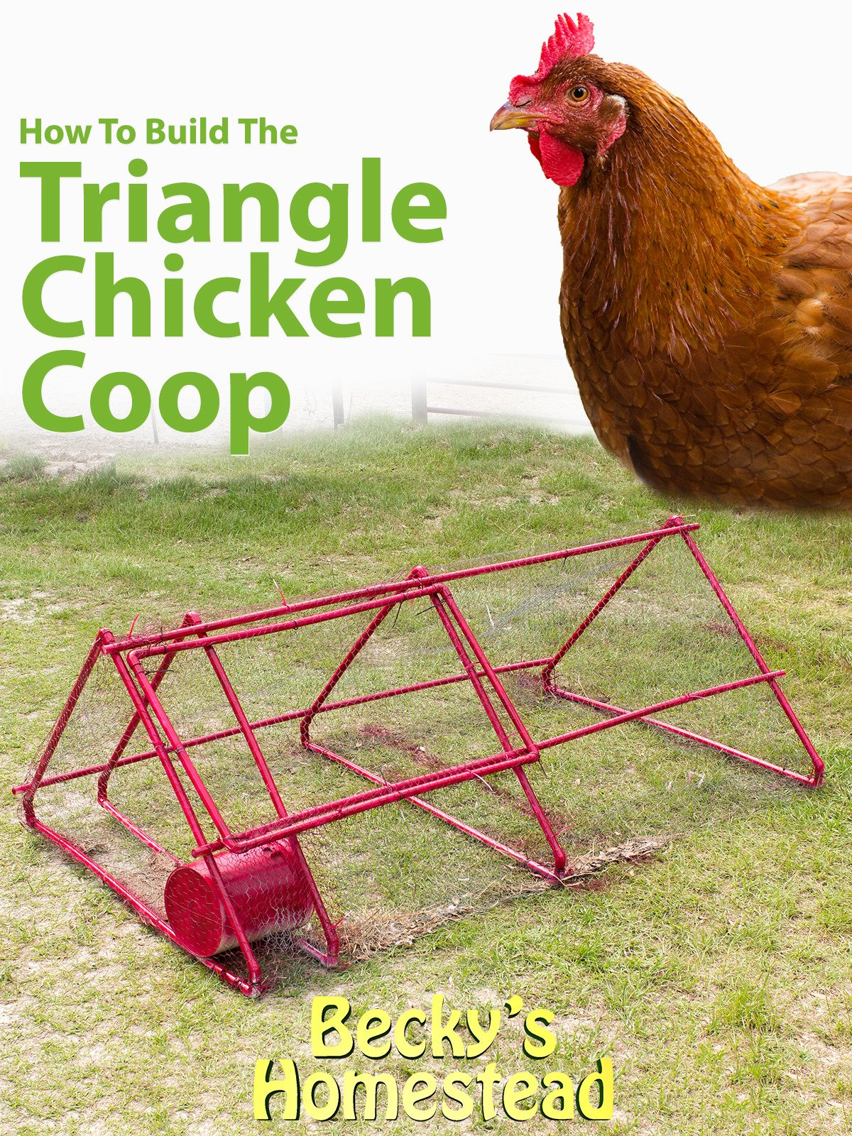 How To Build The Triangle Chicken Coop
