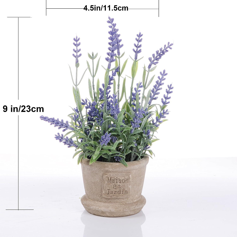 2 PCS YQing Plantes Succulentes Artificielles Vertes Pot Plantes Grasses Home Garden Table D/éco