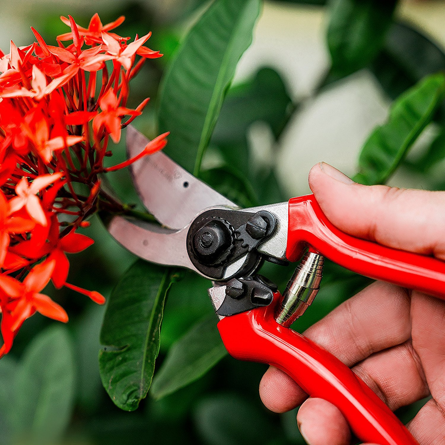 Green Heart Garden Bypass Pruning Shears with Premium Carbon Blades and Safety Lock