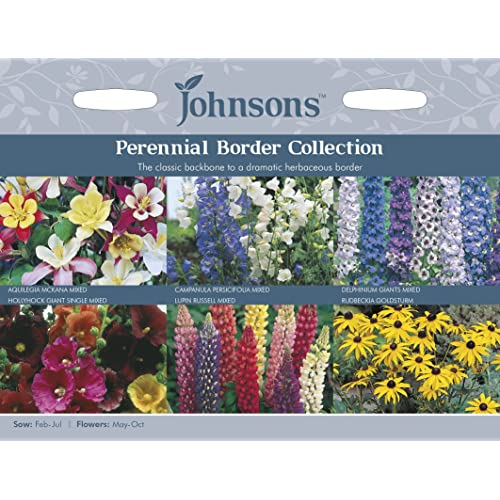 Perennial seeds amazon johnsons ukjofc perennial border collection mightylinksfo