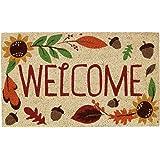 """DII Indoor/Outdoor Natural Coir Easy Clean Rubber Back Entry Way Doormat For Patio, Front Door, All Weather Exterior Doors, 18 x 30"""" - Welcome Autumn"""
