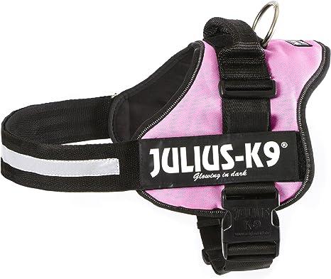 Julius-K9 - Talla Baby 1: Amazon.es: Productos para mascotas