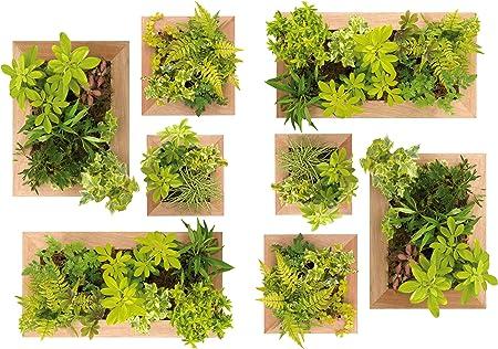 Plage Decoración Adhesiva Jardín Vertical, Vinilo, Verde, 21x3x29.6 cm: Amazon.es: Hogar