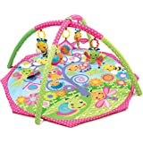 Playgro Bugs N Bloom Activity Gym, Multi Color
